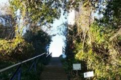 Cape-Henry-Lighthouse-2-604x2701